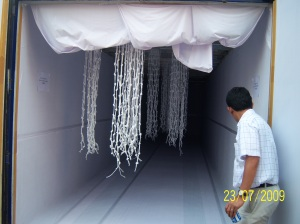 Garment Cargo